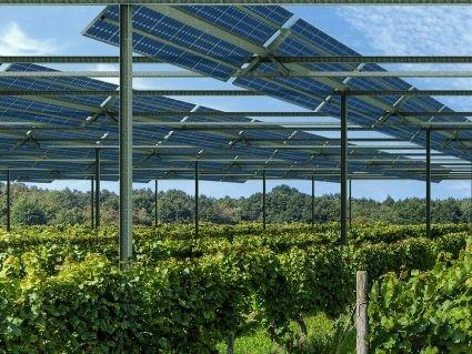 viticulture-agrivoltaisme-1120x340 - Copie