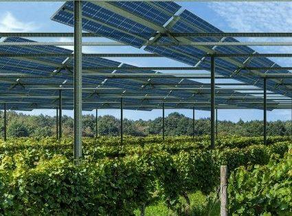 tracker solaire agrivoltaisme solar tracker photovoltaic photovoltaique